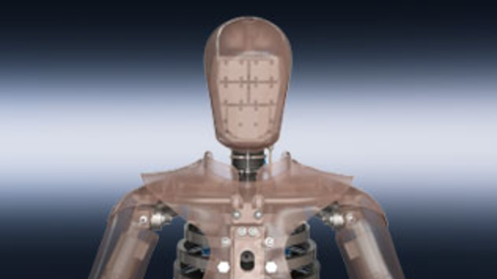 THOR-50M crash test dummy – head-neck assembly